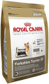 rc yorkie food