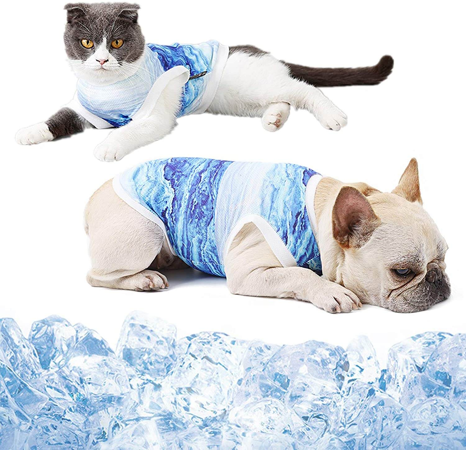 shirts protect your pet's continuous glucose monitoring device